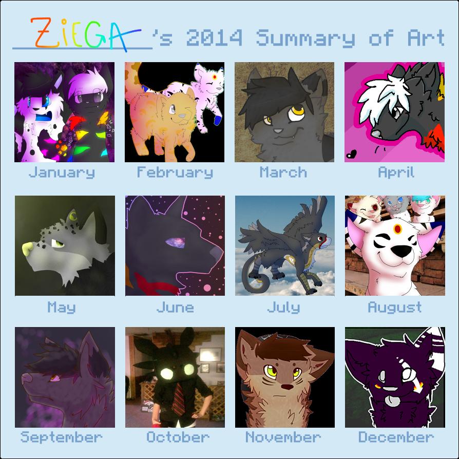 2014 Summary by Ziega