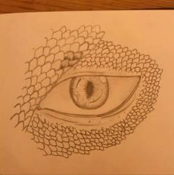 Dragon Eye WIP by LotusThePirate