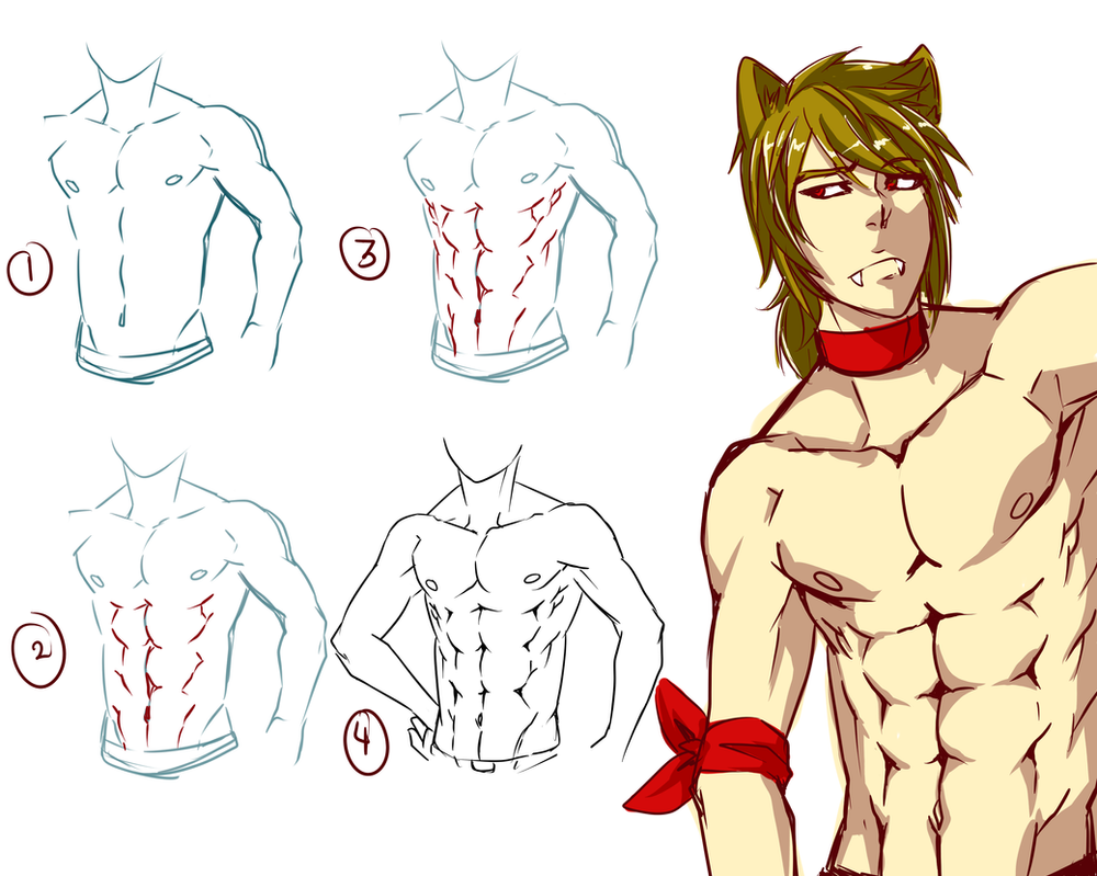 This is a picture of Modest Anime Abs Drawing