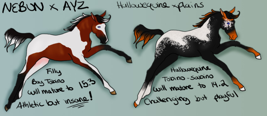 foals for maeix2 by broomstick88