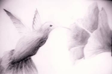 bird by 130490