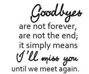 goodbye  by Zoymomo123