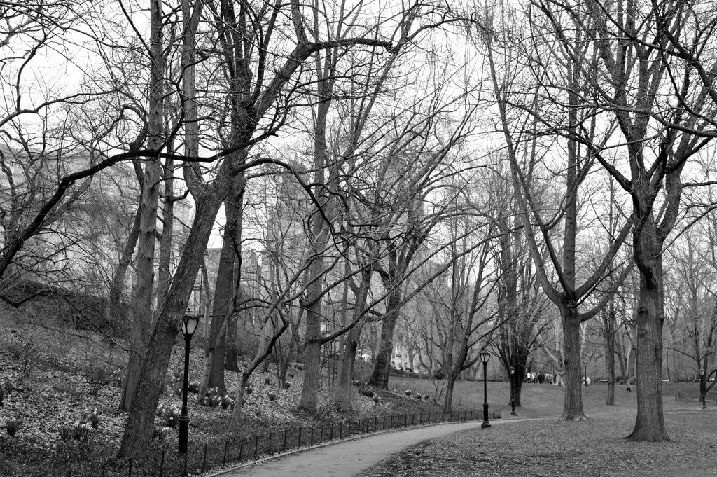 Black n White walk by CiaSalonica