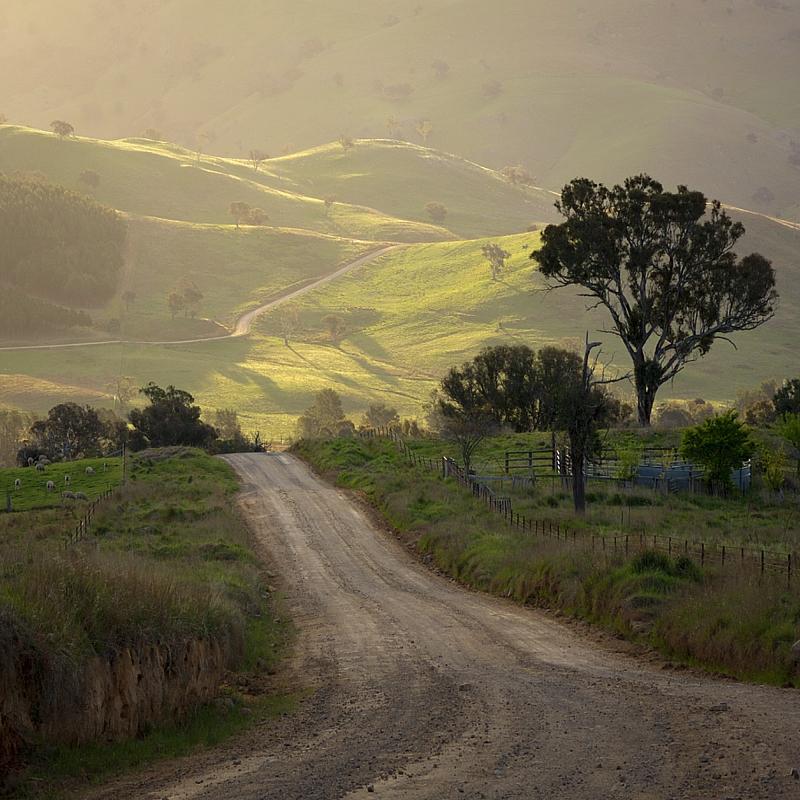 The Road to Cavan by WildWassa