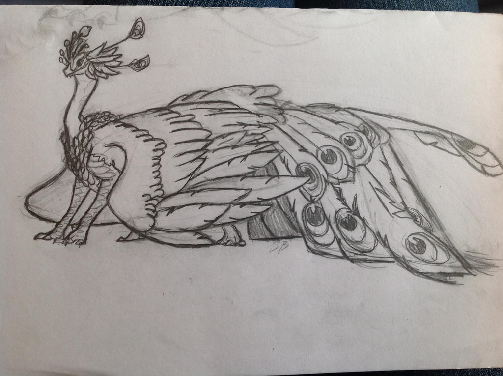 Peacock Dragon  Uncolored By White Water On DeviantArt
