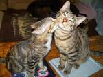 .:Just a Kiss:.