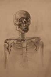 Selective Focus Skull