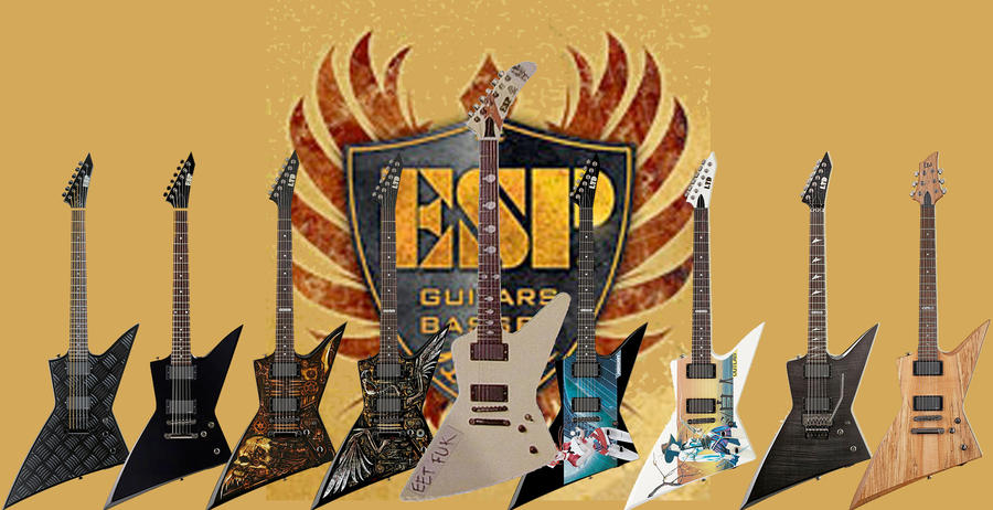ESP Guitar Line By MotionArtJohnnY