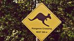 Kangaroo crossing by Clarctic