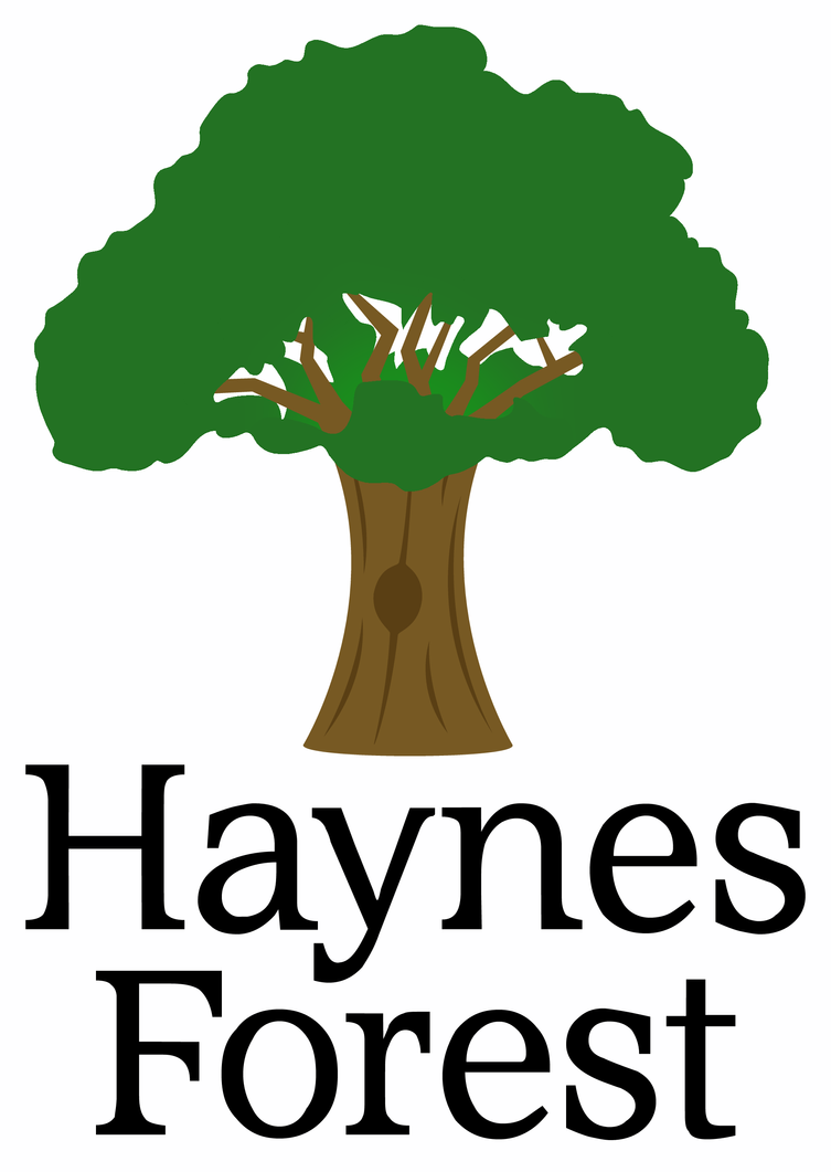 haynes forest logo v2 by hyper42 on deviantart