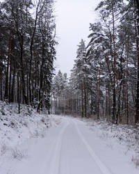 Snow covered road to the village Malastow