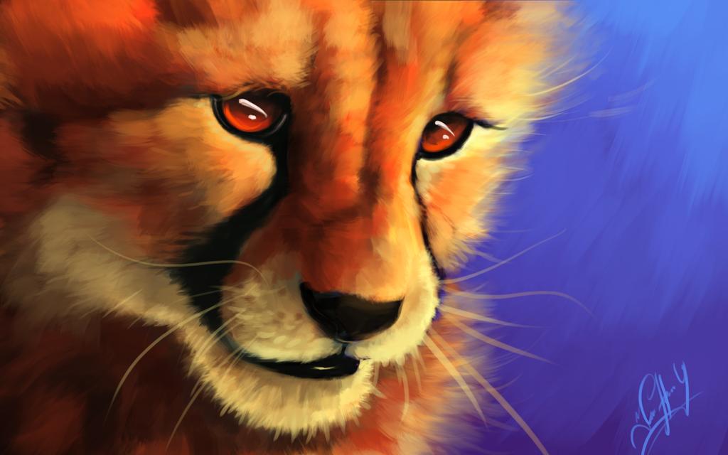 Cheetah by Angrycheetah