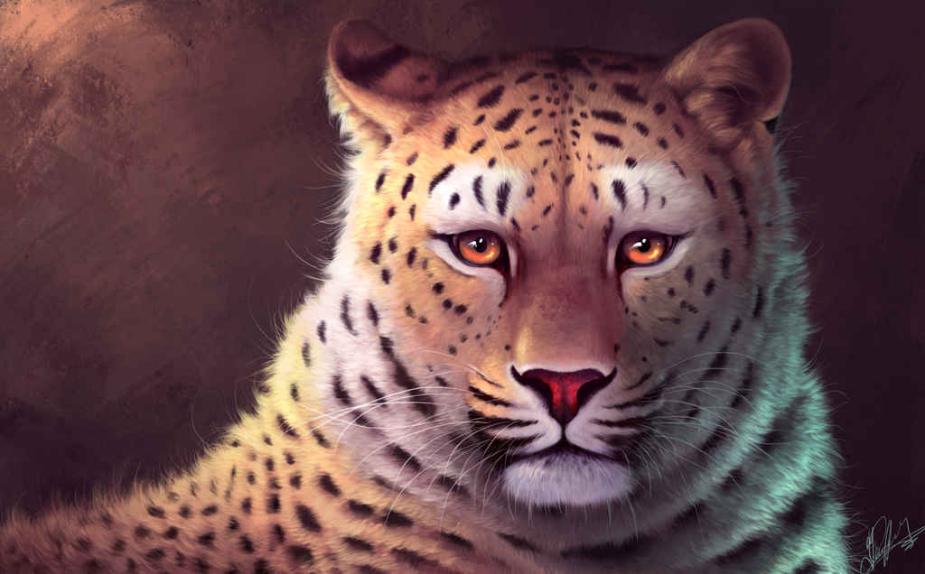 leopard by Angrycheetah