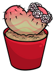 Potted Heart Cactus Gift