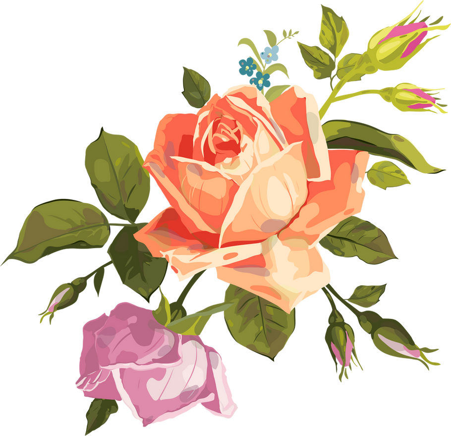 VECTOR ROSE PNG by LupishaGreyDesigns on DeviantArt for Vector Rose Flower Png  568zmd