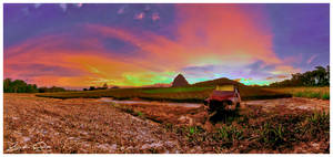 Pineapple Farm Glasshouse Mountains by jaydoncabe