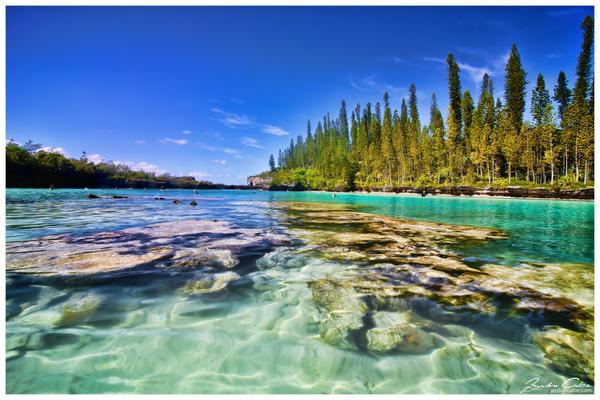 aquarium isle of pines new caledonia by jaydoncabe on deviantart