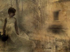 Solitary Silence