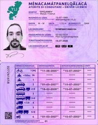 Ilian Driver's License