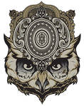 The Mind Reader, Owl Shirt