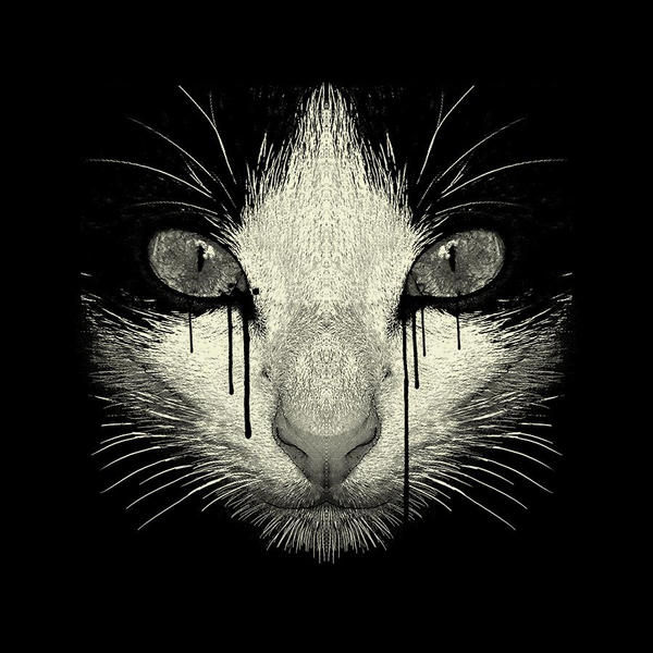 Inked Cat Shirt by Design-By-Humans