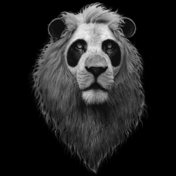 Designer panda перевод песни - 3b86
