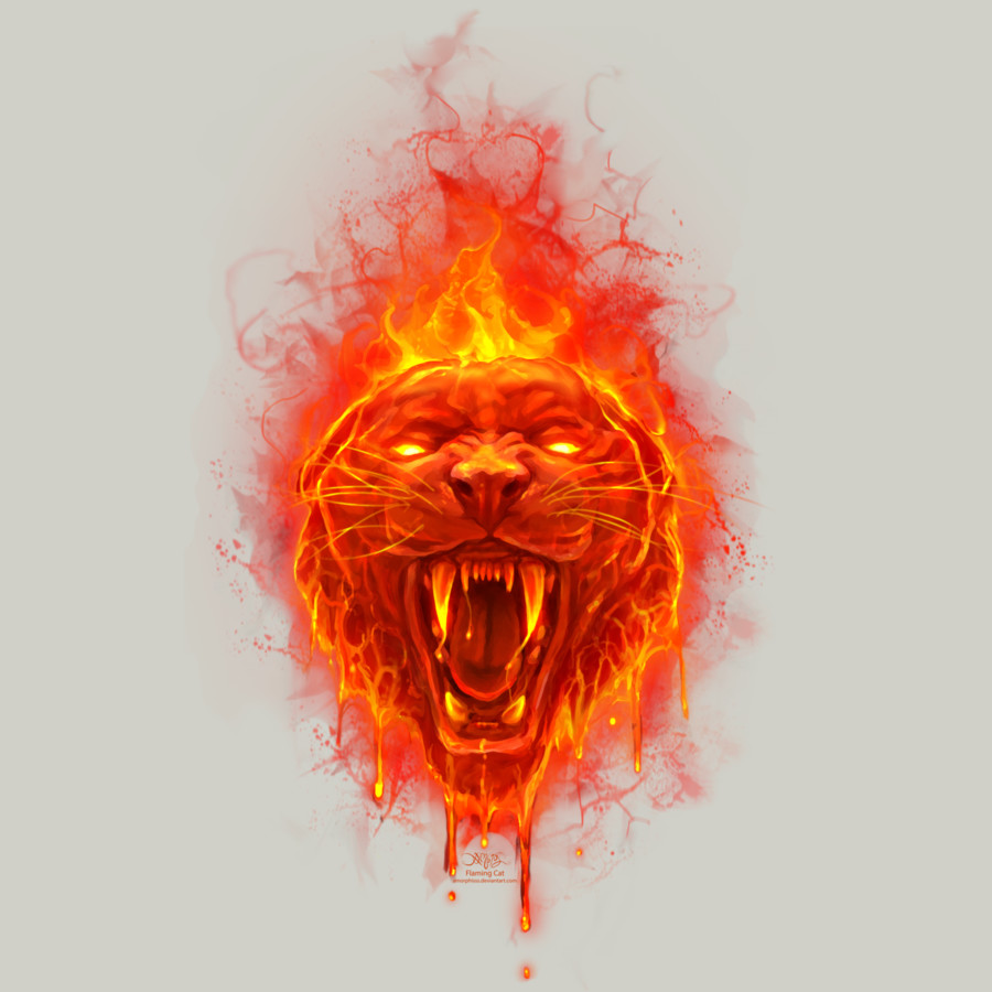 Flaming Cat by Chriskar by Design-By-Humans