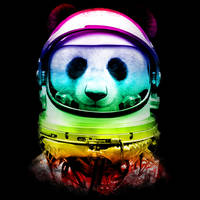 Space Panda by Design-By-Humans