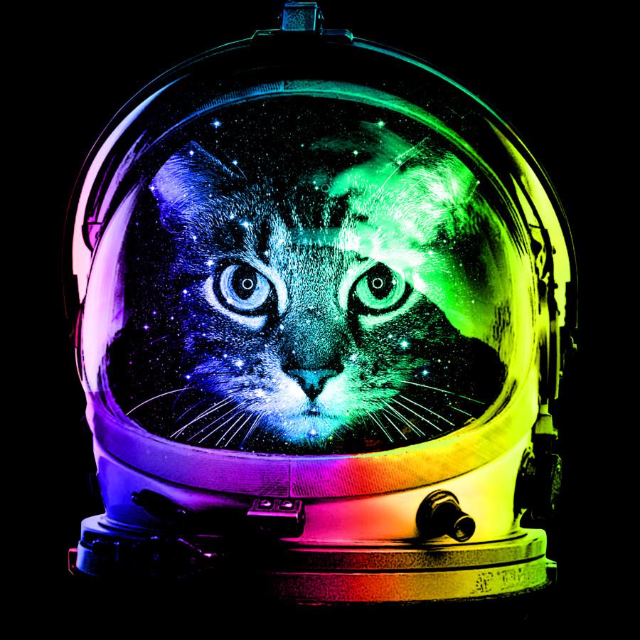 astronaut kitty - photo #15