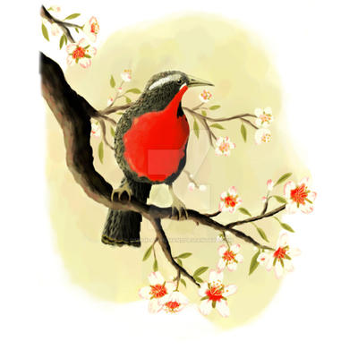 Bird and Blossoms by Design-By-Humans