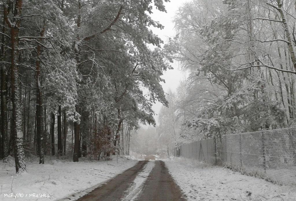 Snowy Day by MaRyS90
