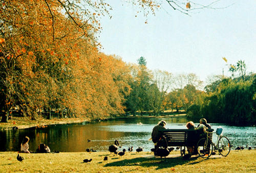 the park by lloydhughes