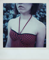 SX-70 polaroid 93 of 100 by lloydhughes