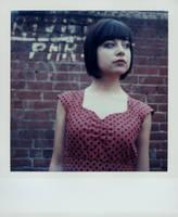 SX-70 polaroid 77 of 100 by lloydhughes