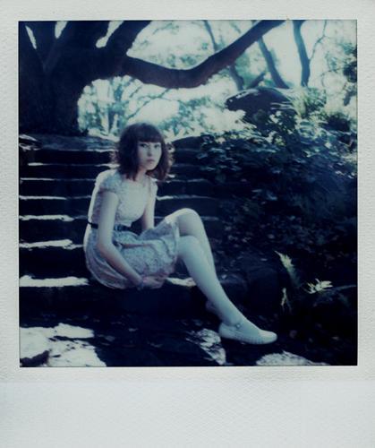 SX-70 Polaroid 62 of 100 by lloydhughes
