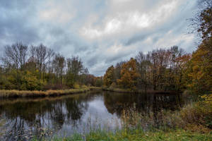 autumn by Perseus67