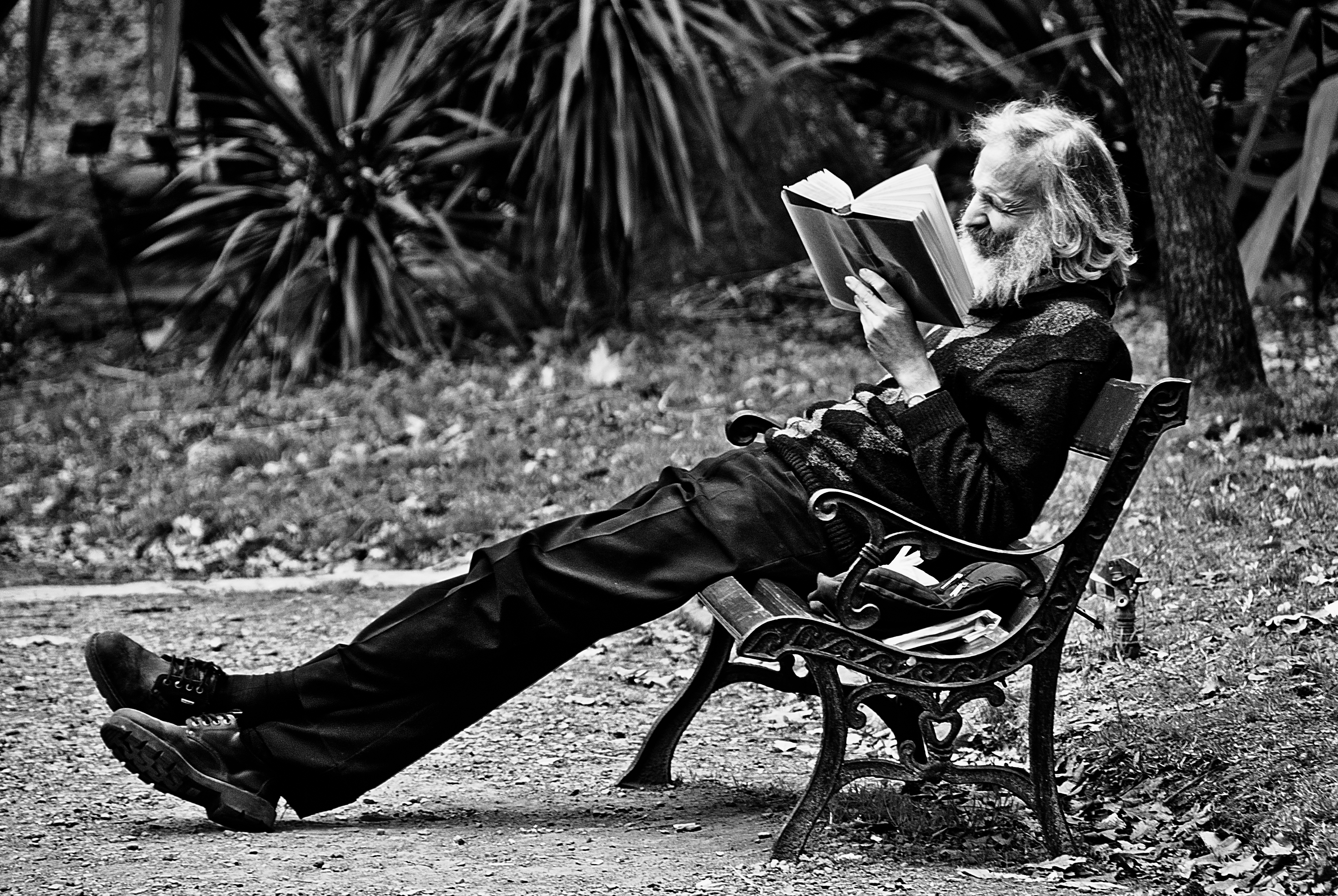 Bearded reader by anahuac
