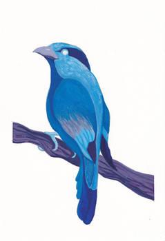 Blue Bird pallete challenge