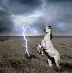 horse rearing at lightning