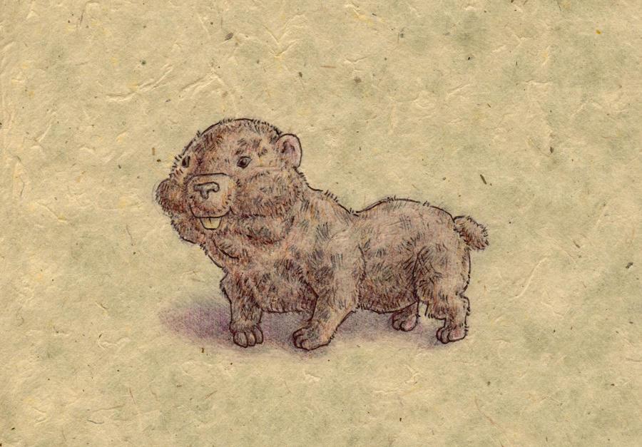 Beaverdog by bluefootednewt