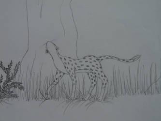International Cheetah Day 2013 by Nollit