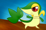 Taunting Snivy