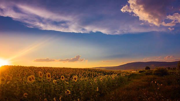 Bulgarian Lands