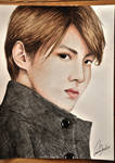 EXO: Kris(Art trade)