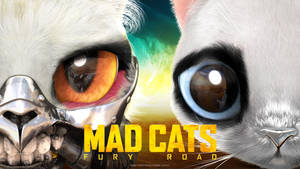 MADCATS Teaser