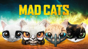 MAD CATS FURY ROAD