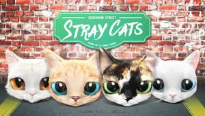 Stray Cats of The Seokgwan Street