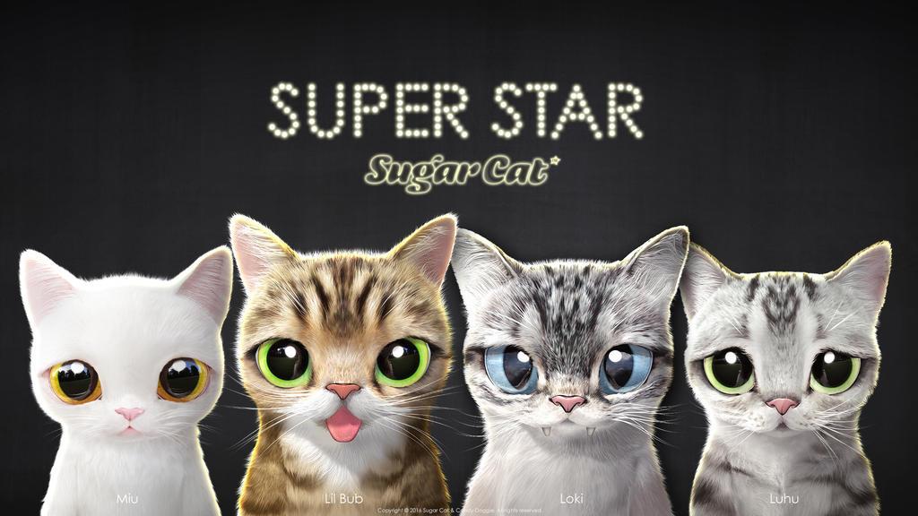 Super Star Sugar Cat!