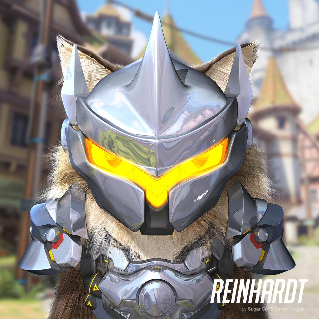 Reinhardt cat