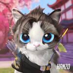 Hanzo cat